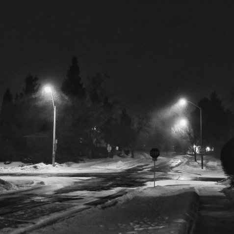 canada winters snowstorm black and white photography one plus 5t flyingonemptythoughts