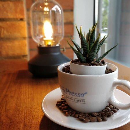 coffee shop freelancer